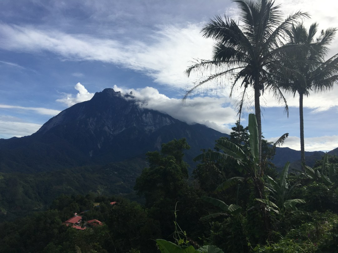 BORNEO: A MOUNTAIN, THE PORING FOREST & IN SEARCH OF THE ELUSIVE RAFFLESIA FLOWER