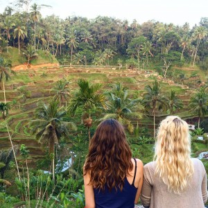 Rice Field, Ubud, Bali, Tagallaran, Culture, Nature