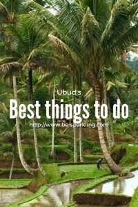 Ubud, Bali, Indonesia, travel blog, travel blogger