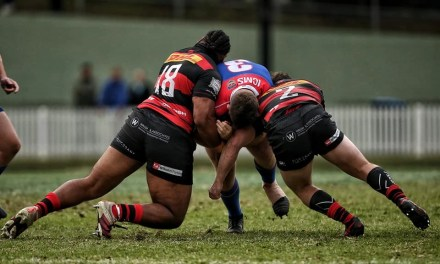 CRUNCH TIME: MARLINS GAFFED BY SHOREMEN IN BLUDGER AT MANLY OVAL