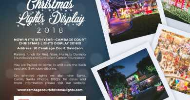 Cambage Court Christmas Lights