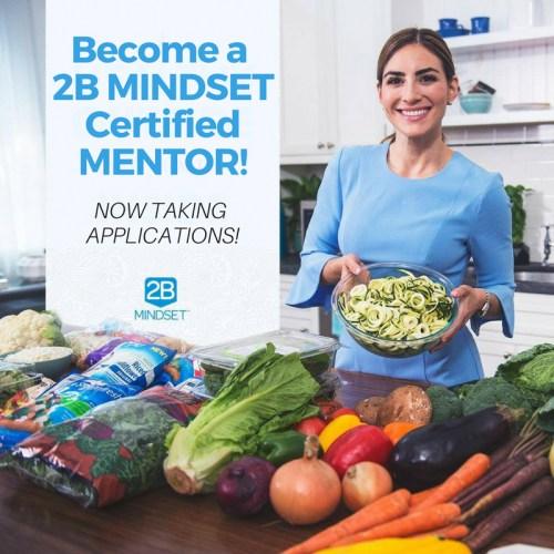 2B Mindset Certified Mentor