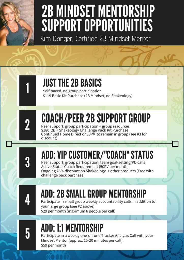 2B Mindset Mentorship Opportunities