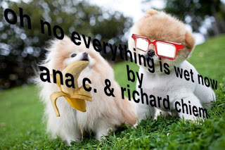 'Oh No Everything is Wet Now' by Richard Chiem and Ana Carrete