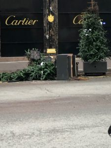 Cartier Trees Torched in Paris Riots
