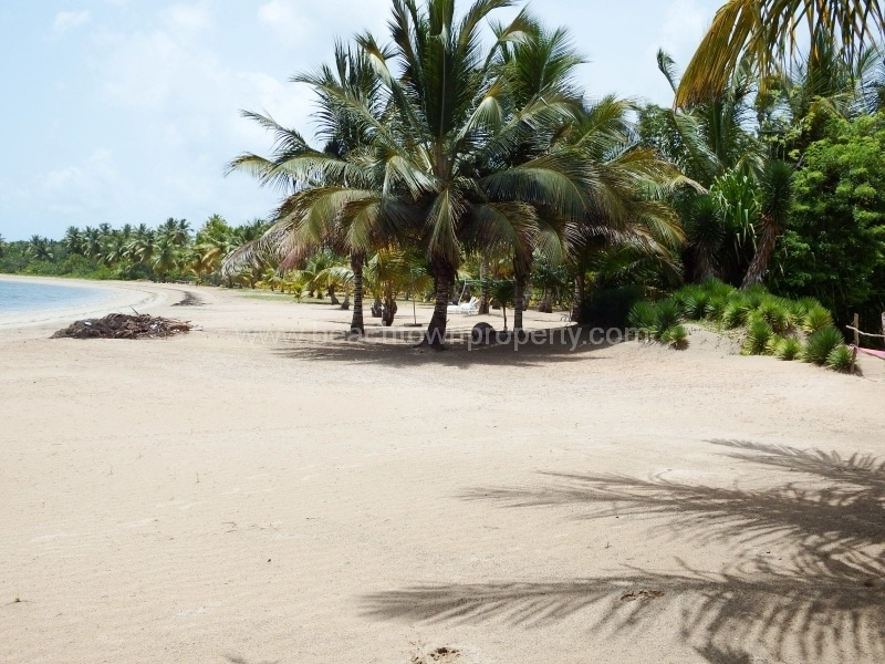 Beach lot for sale Las Terrenas Samana