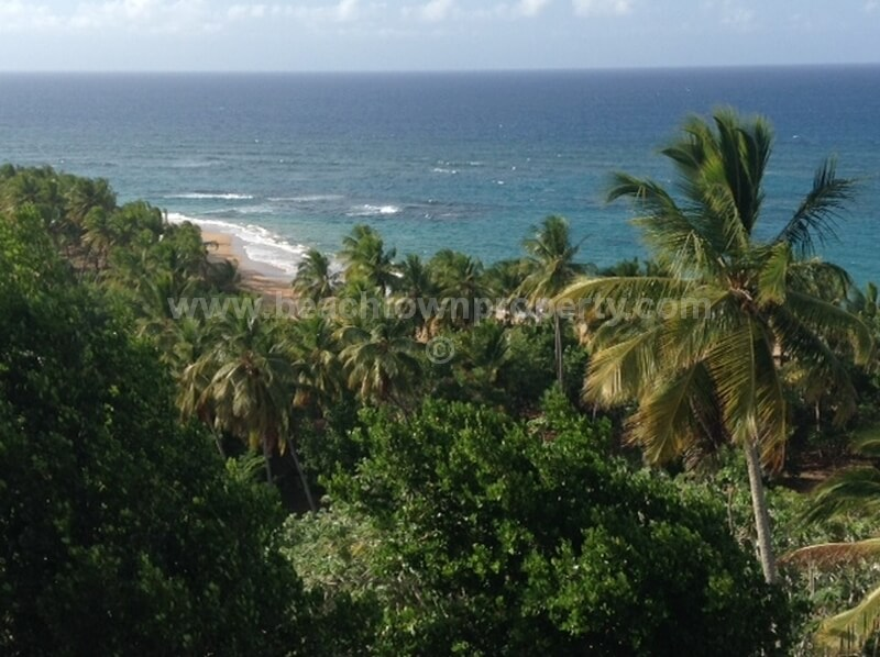 Caribbean Beach Front land For Sale Samana Dominican Republic