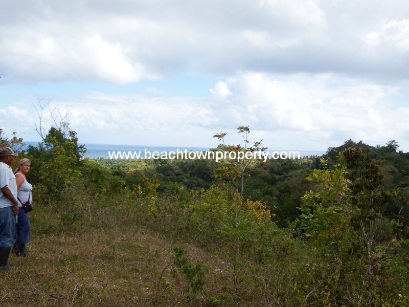 Bargain Ocean View Land Las Terrenas Samana