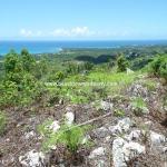 Ocean View Building Land For Sale Caribbean Dominican Republic