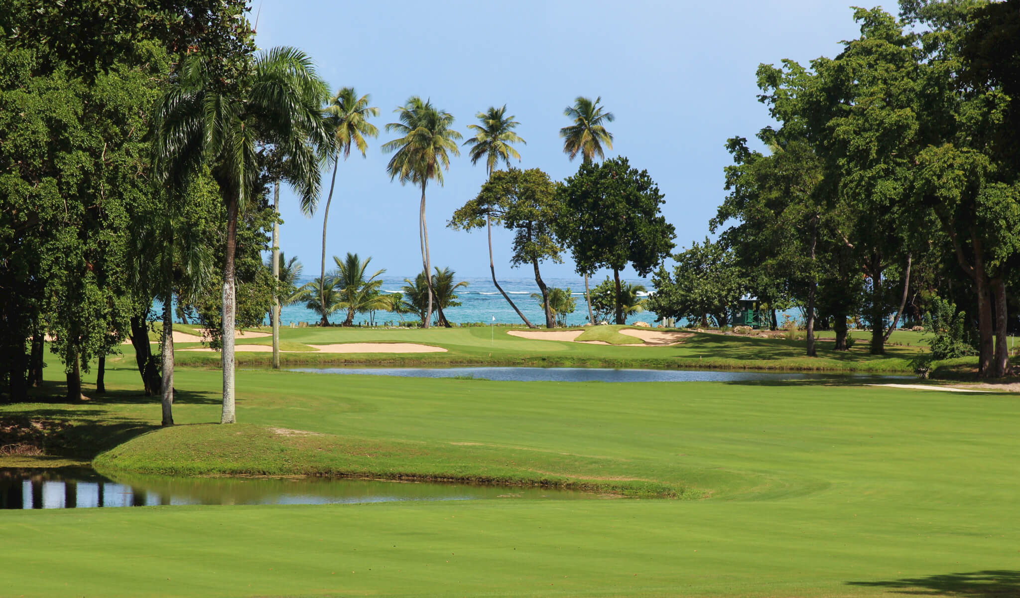 The investment in The New Golf Course Las Terrenas Samana Dominican Republic will involve not one but two 18 hole courses and a 9 hole course along with Golf shop and Golf pros.