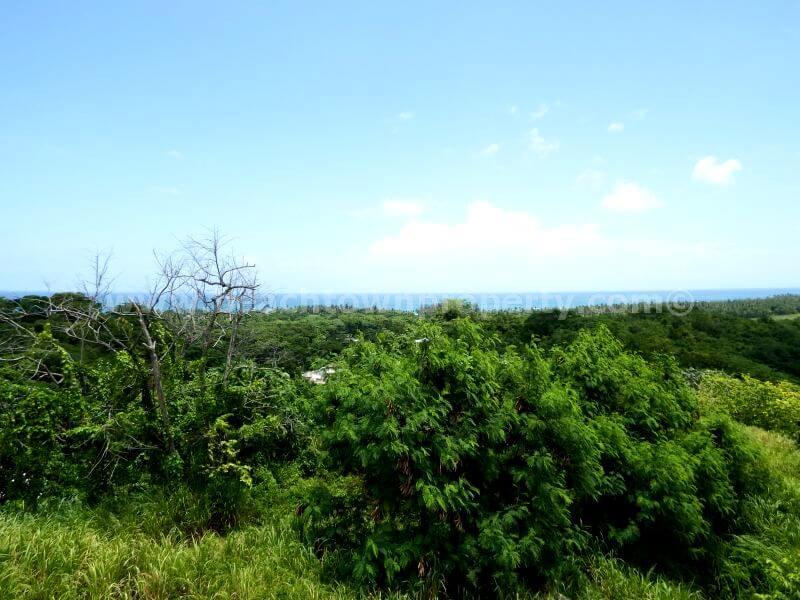 Dominican Republic Ocean view Building Lot Las Terrenas