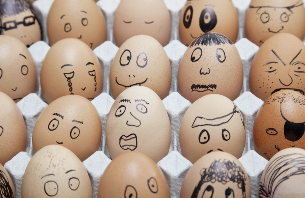 The Return to Glory of the Incredible, Edible Egg