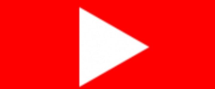 cuccioli Beagle video