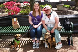 Luna and I visit fellow pet blogger Emmy and her friend Avery