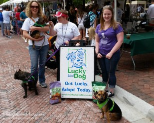 Luna and I bring donations to Lucky Dog Rescue
