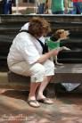 Beagles, Beagles, Everywhere!