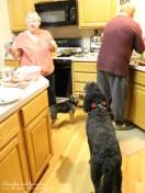 Luna helps cook Christmas dinner