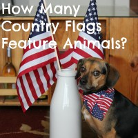 How Many Country Flags Feature Animals?