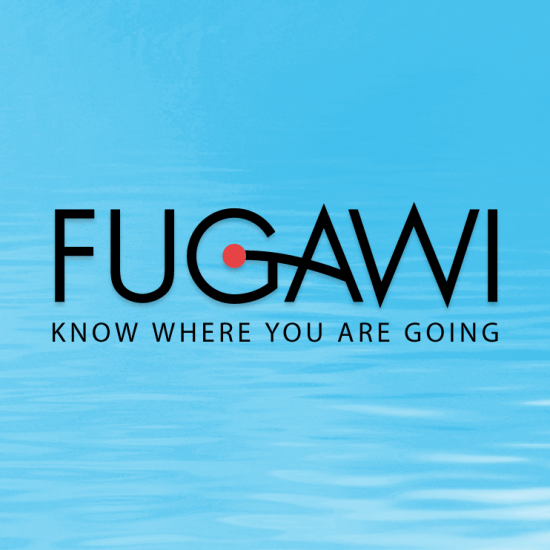 Icon - Fugawi - Previous Work