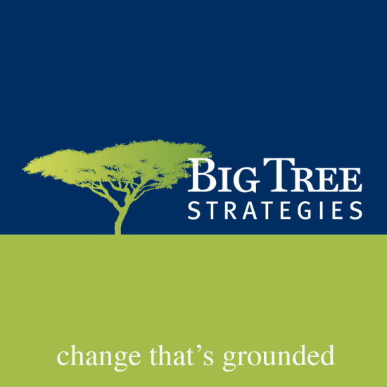 Icon - Big Tree Strategies