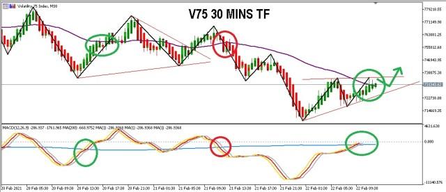 V75 30 MINS TF