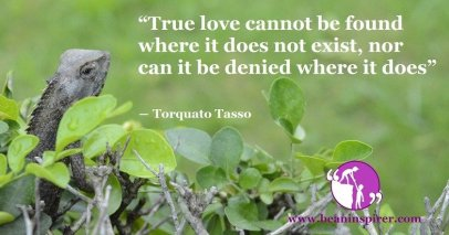 true-love-cannot-be-found-where-it-does-not-exist-nor-can-it-be-denied-where-it-does-torquato-tasso-be-an-inspirer