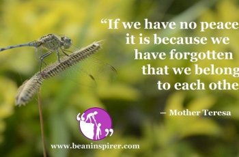 if-we-have-no-peace-it-is-because-we-have-forgotten-that-we-belong-to-each-other-mother-teresa-be-an-inspirer