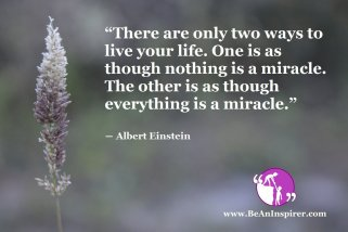 """""""There are only two ways to live your life. One is as though nothing is a miracle. The other is as though everything is a miracle."""" ― Albert Einstein"""
