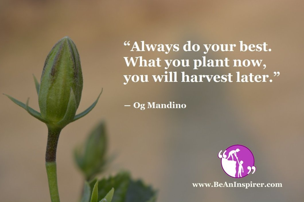 Always-do-your-best-What-you-plant-now-you-will-harvest-later-Og-Mandino-Be-An-Inspirer