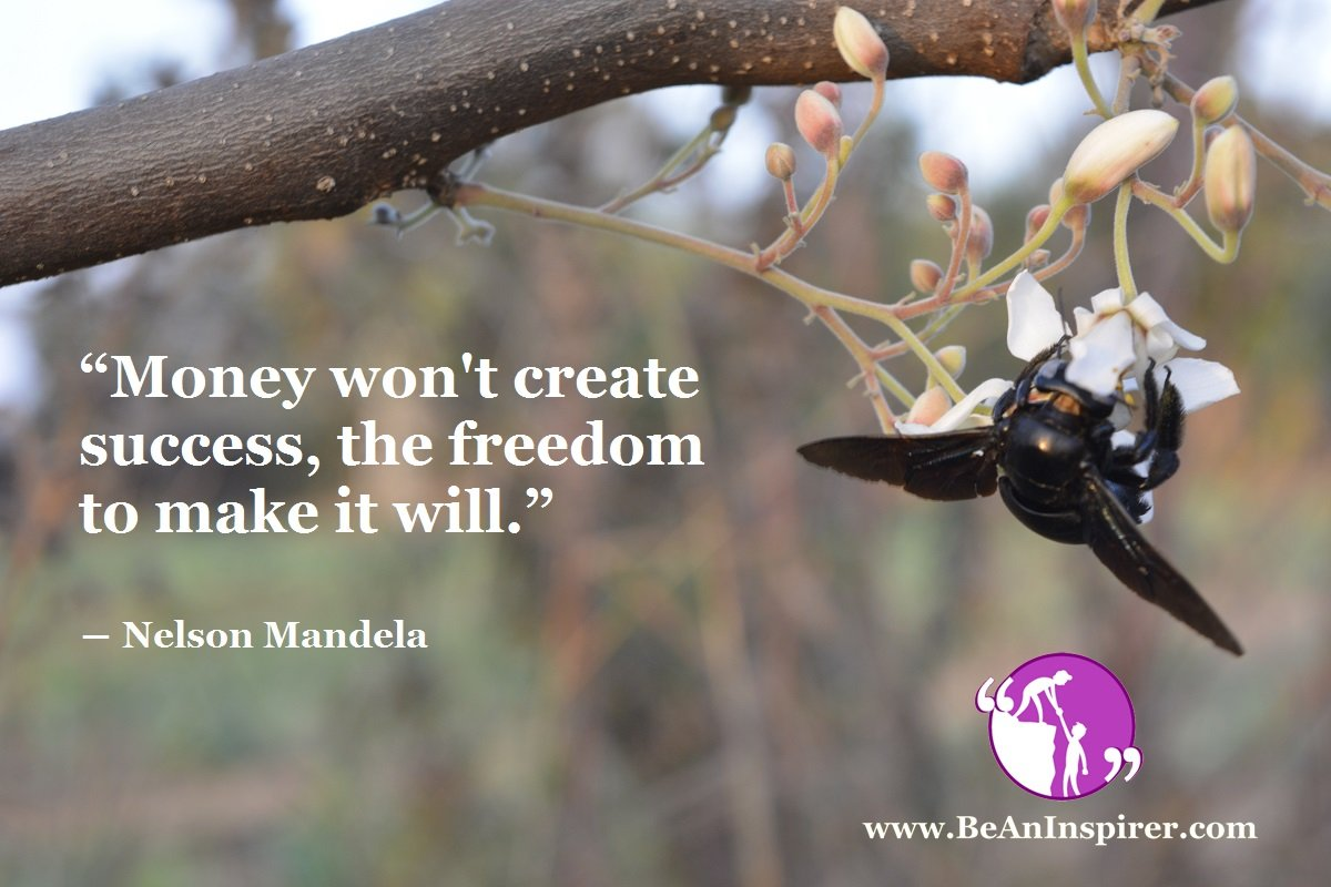 Money-wont-create-success-the-freedom-to-make-it-will-Nelson-Mandela-Be-An-Inspirer