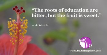 The-roots-of-education-are-bitter-but-the-fruit-is-sweet-Aristotle-Be-An-Inspirer-FI