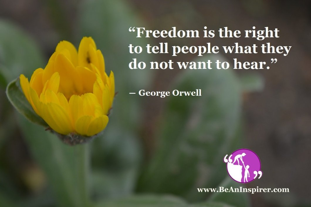 Freedom Of Speech – You Can Say It, Even If No One Wants To Hear!