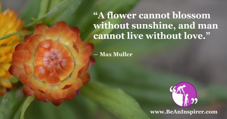 A-flower-cannot-blossom-without-sunshine-and-man-cannot-live-without-love-Max-Muller-Be-An-Inspirer-FI