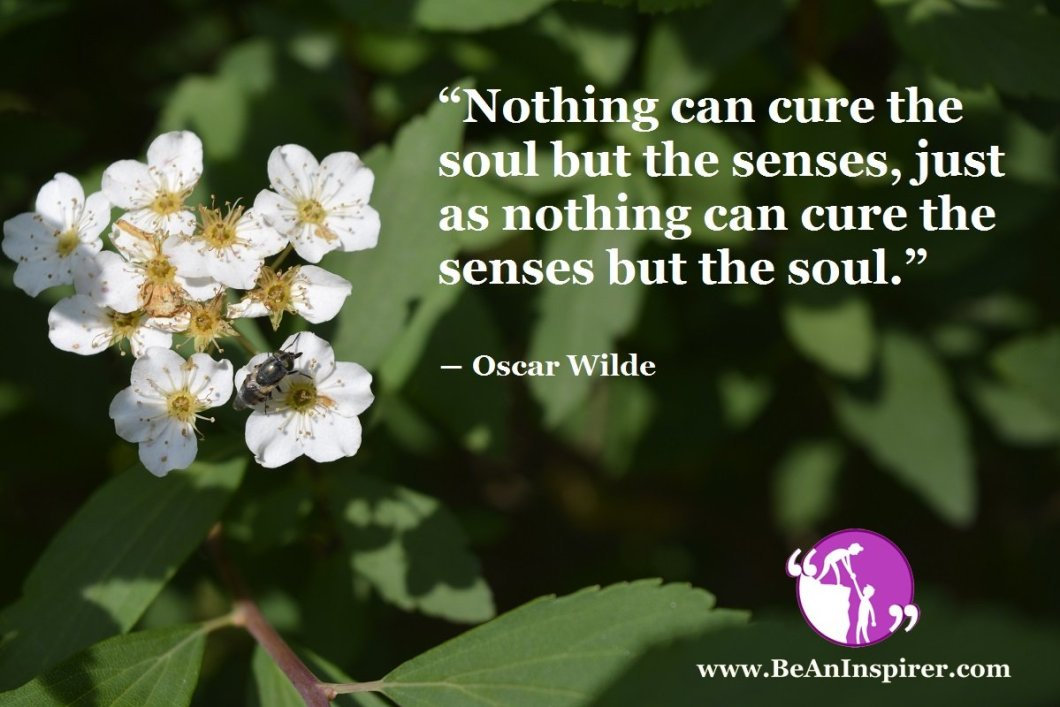 The Interdependence Of Soul And Senses