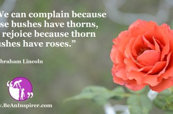 We-can-complain-because-rose-bushes-have-thorns-or-rejoice-because-thorn-bushes-have-roses-Abraham-Lincoln-Positivity-Quote-Be-An-Inspirer-FI