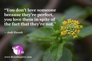 You-dont-love-someone-because-they-re-perfect-you-love-them-in-spite-of-the-fact-that-theyre-not-Jodi-Picoult-Love-Quote-Be-An-Inspirer
