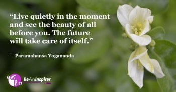 Live-Quietly-in-the-Present-Work-for-the-Present-and-the-Future-will-be-Amazing-