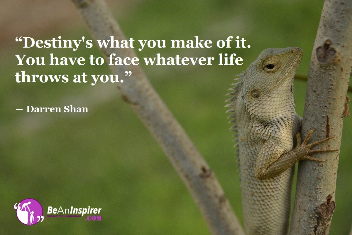 Destinys-what-you-make-of-it-You-have-to-face-whatever-life-throws-at-you-Darren-Shan-Bravery-Quote-Be-An-Inspirer