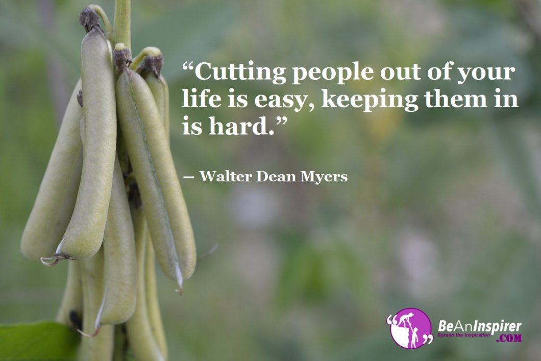 Cutting-people-out-of-your-life-is-easy-keeping-them-in-is-hard-Walter-Dean-Myers-Friendship-Quotes-Be-An-Inspirer