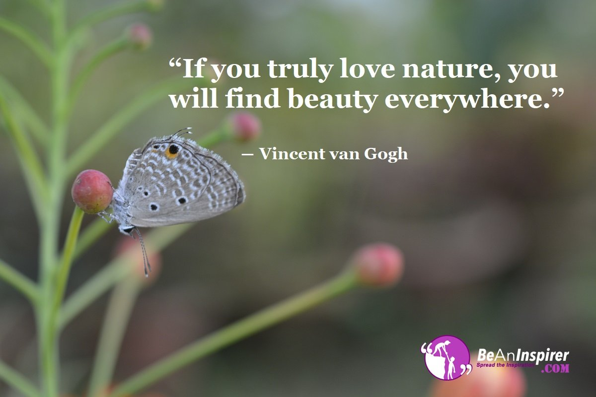True Nature Lovers would Find Beauty Everywhere and in All Sort of Things
