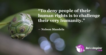 Respect Of All Human Rights: Key To A Peaceful World