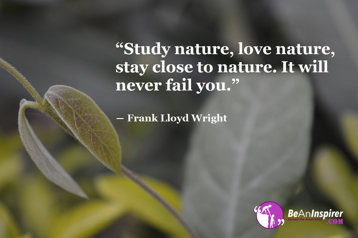 Study-nature-love-nature-stay-close-to-nature-It-will-never-fail-you-Frank-Lloyd-Wright-Nature-Quotes-Be-An-Inspirer