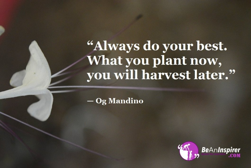 """Always do your best. What you plant now, you will harvest later."" — Og Mandino"