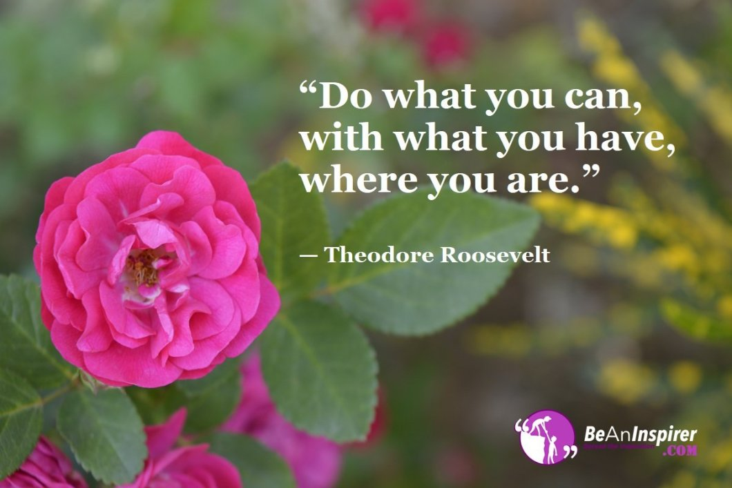"""""""Do what you can, with what you have, where you are."""" — Theodore Roosevelt"""