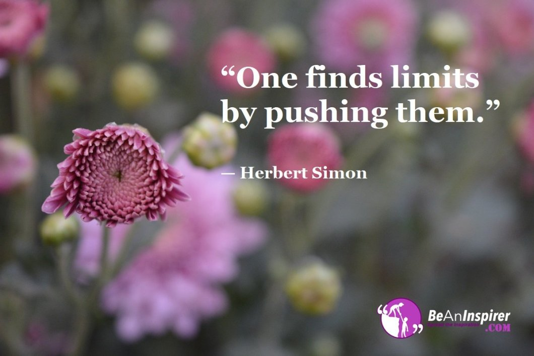 """One finds limits by pushing them."" — Herbert Simon"