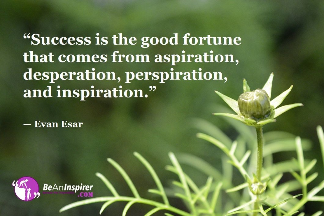 """""""Success is the good fortune that comes from aspiration, desperation, perspiration, and inspiration."""" — Evan Esar"""
