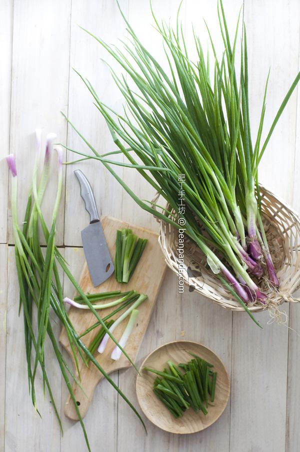 spring_onion_01
