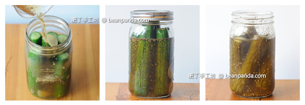 pickled_cucumber_step05