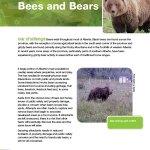 Bees-and-Bears-Fact-Sheet-2017
