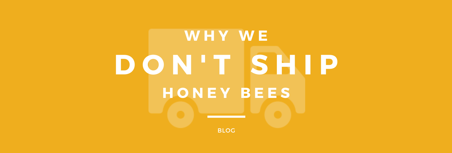 Why We Don't Ship Honey Bees - Bear Country Bees